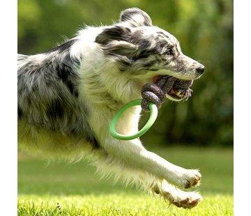 Beco Pets Hondenspeelgoed Hoop on a Rope Groen
