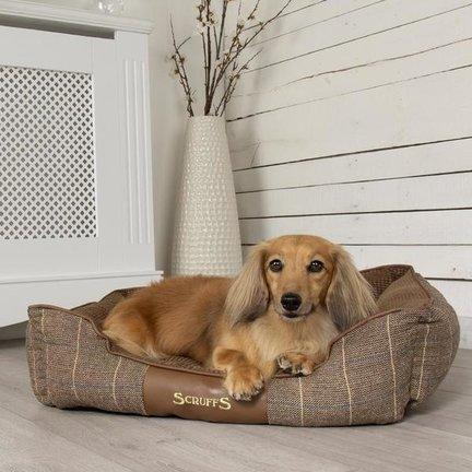 Hondenmand en hondenbed