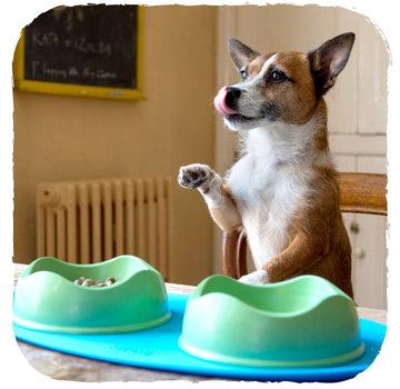 Beco Pets Place Mat Blue
