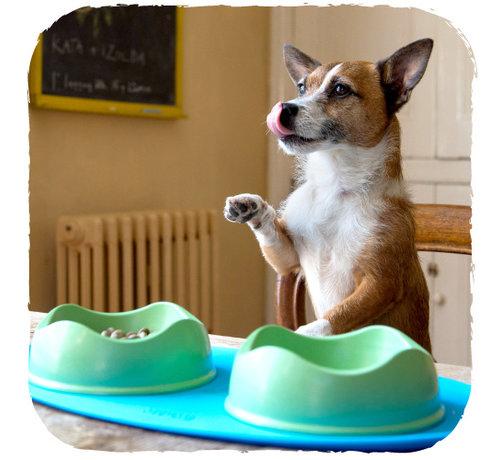 Beco Pets Onderlegger Place Mat Blauw