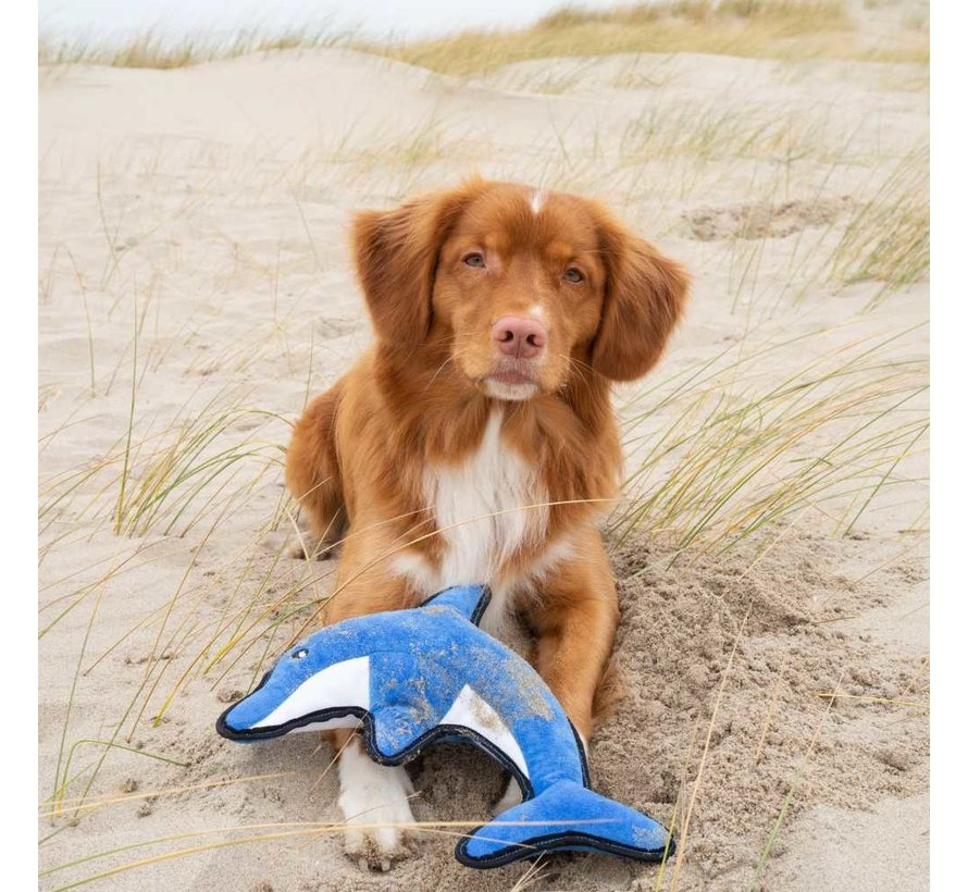 Dog Toy Plush Dolphin