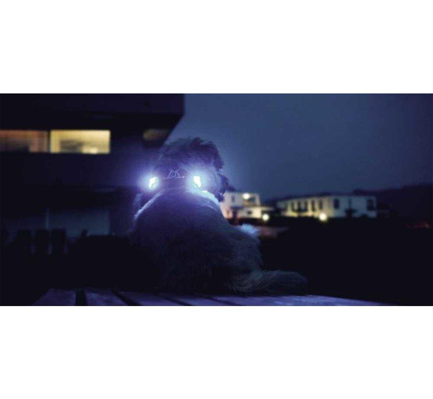 Luumi led lampjes Zwart