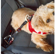 Curli Car Safety Belt