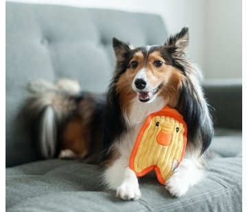 Outward Hound Dog Toy Invincibles Mini Chicky