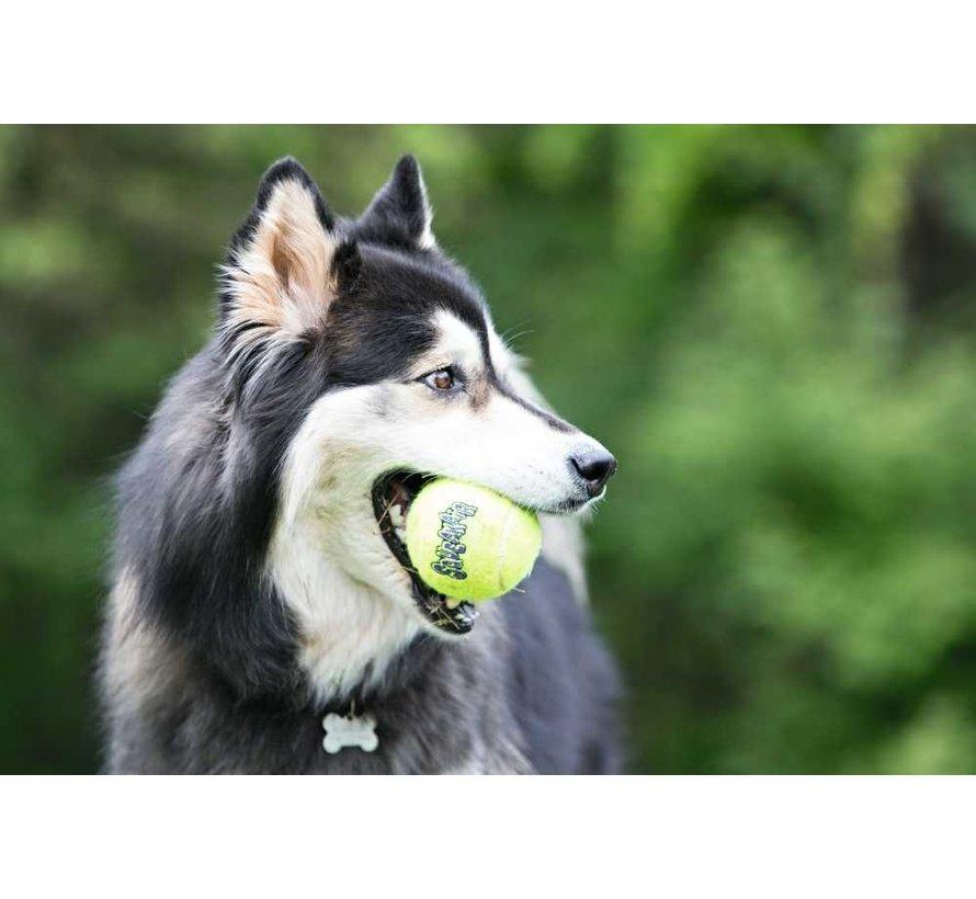 Hondenspeelgoed Squeakair Balls