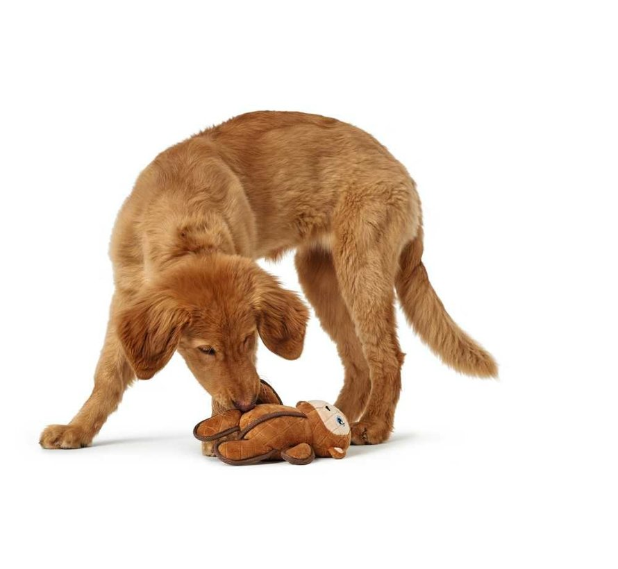 Dog Toy Tough Toys