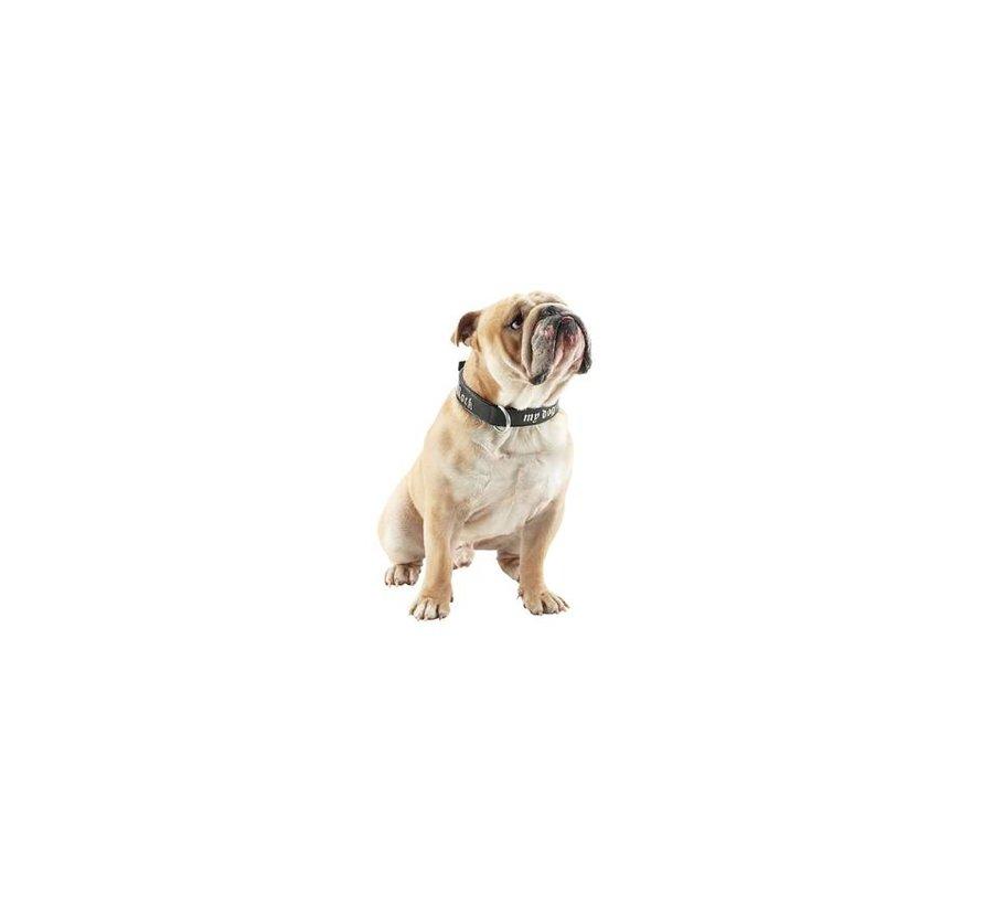 Hondenhalsband Rock my Dog