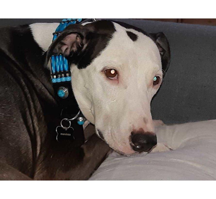 Hondenhalsband Blue River 35mm