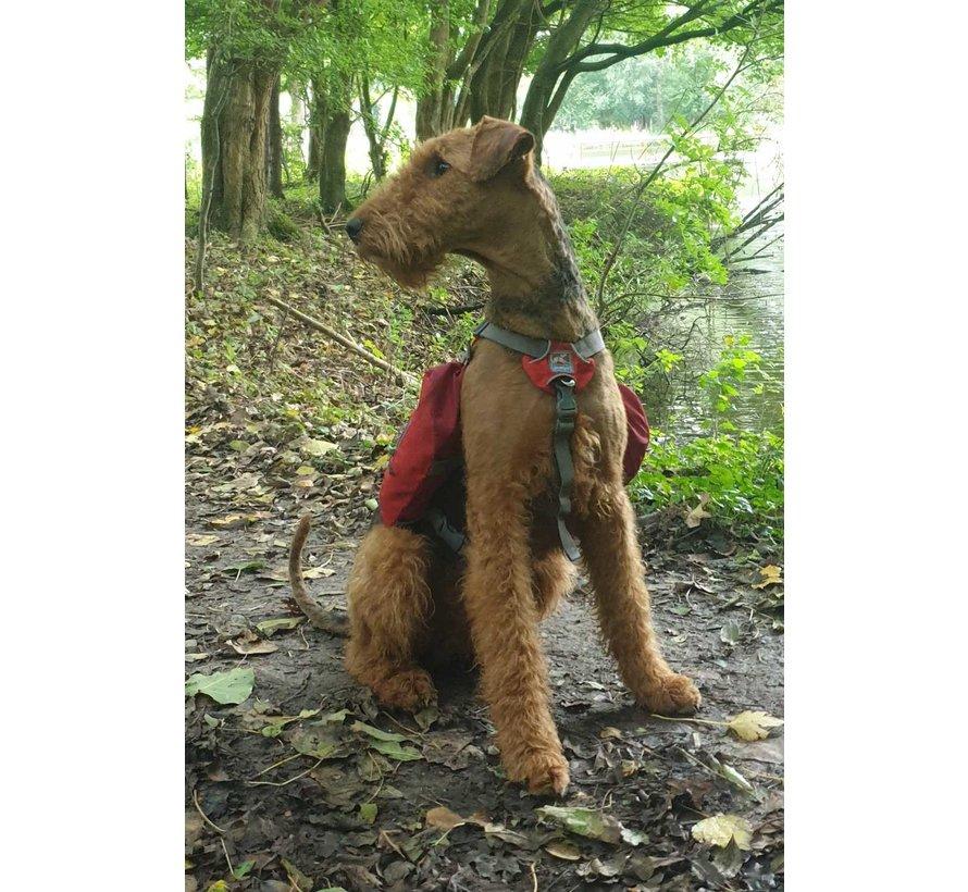 Hondenrugzak Baxter