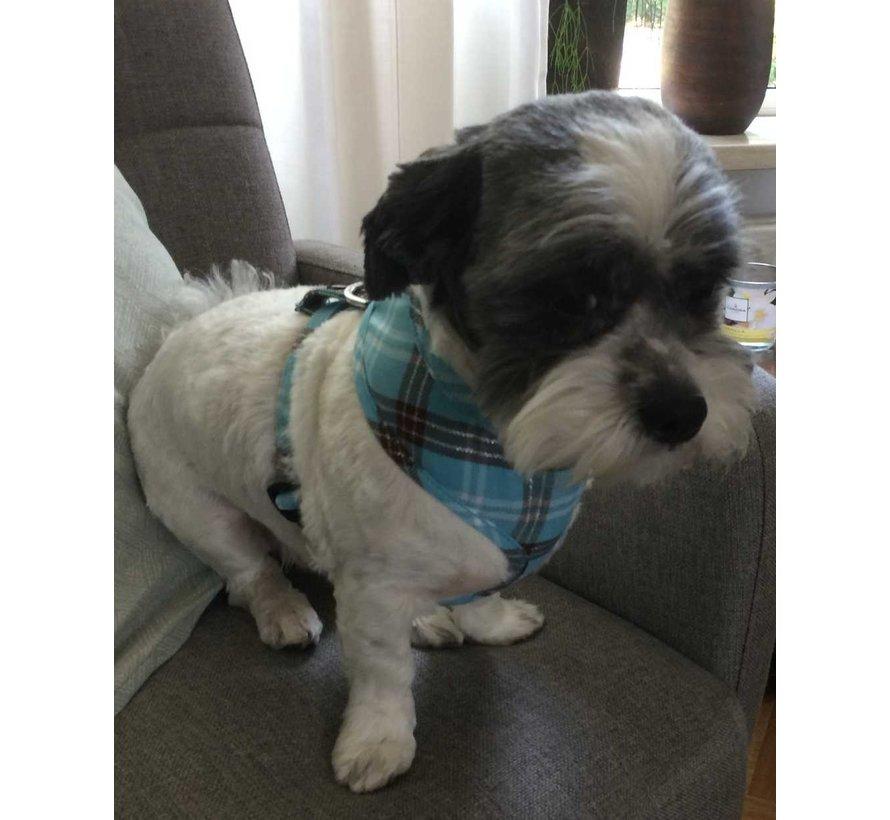 Round Loop Dog Harness Scottish Turquoise