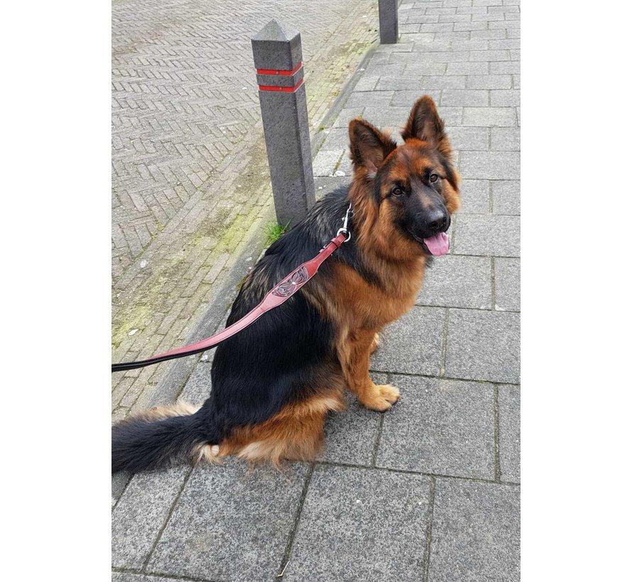 Dog Leash Savannah Burgundy