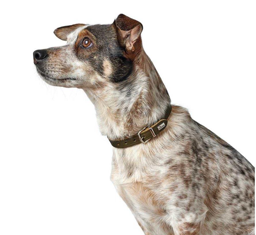 Hondenhalsband Aalborg Olive
