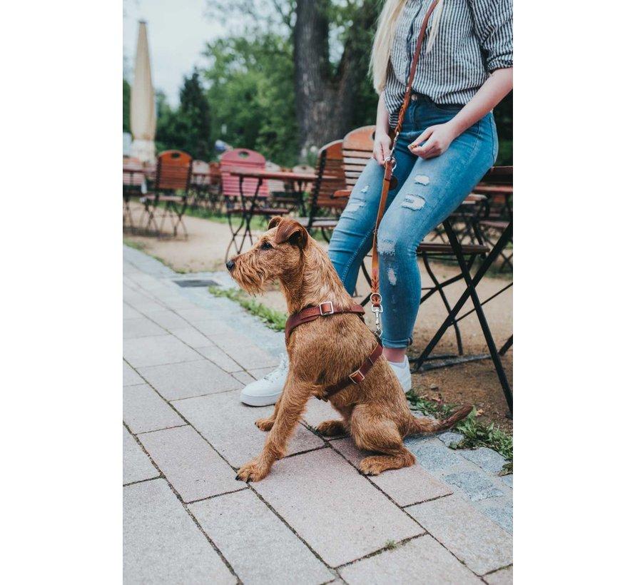 Dog Harness Aalborg Cognac