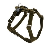 Hunter Dog Harness Aalborg Olive