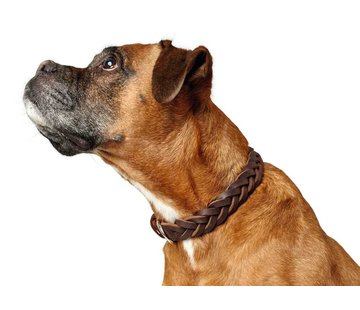 Hunter Dog Collar Solid Education Brown