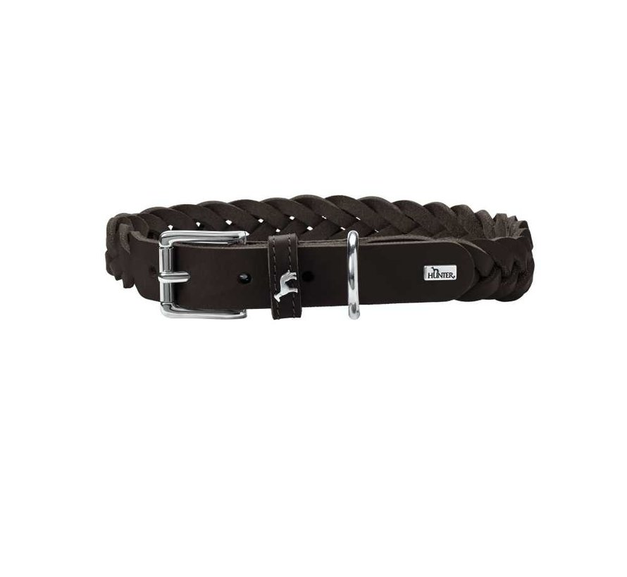 Dog Collar Solid Education Brown