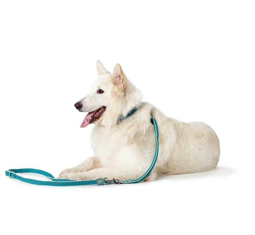 Verstelbare Hondenriem Hilo Turquoise