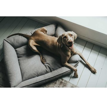 Hunter Dog Bed Prag Easy Clean Grey