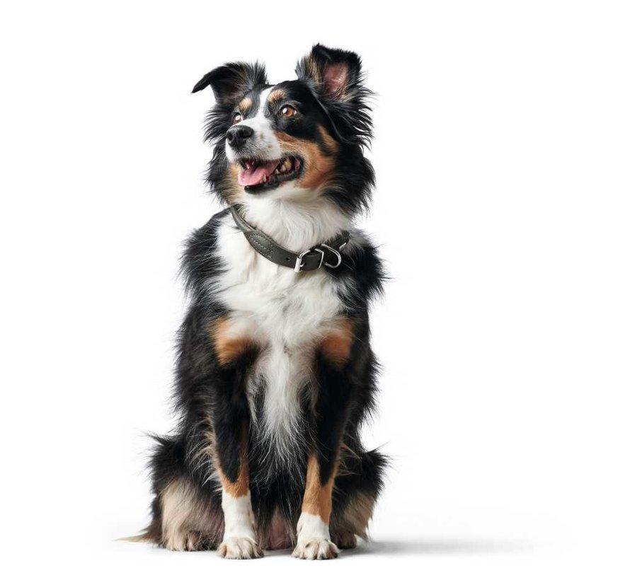 Dog Collar Round & Soft Grey