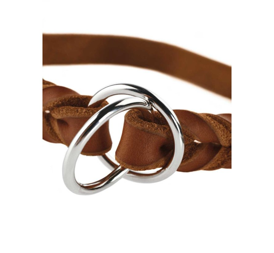Training Halsband Hond Solid Education Cognac