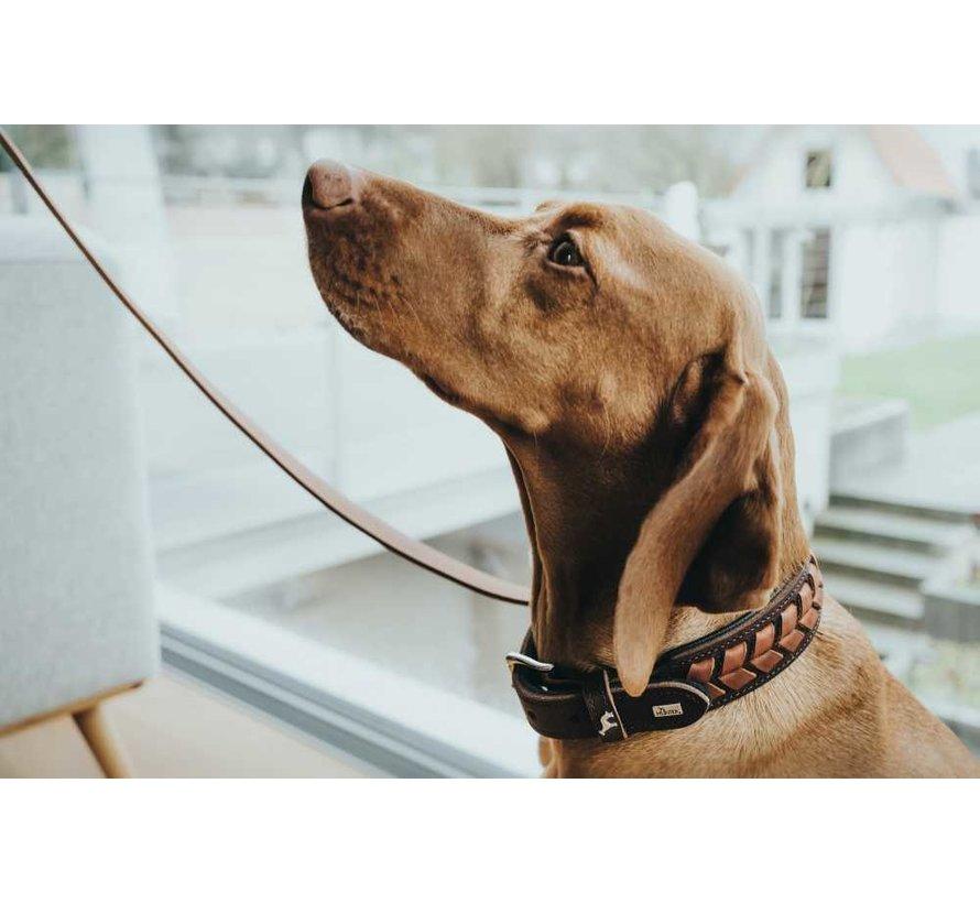 Hondenhalsband El Paso Bruin