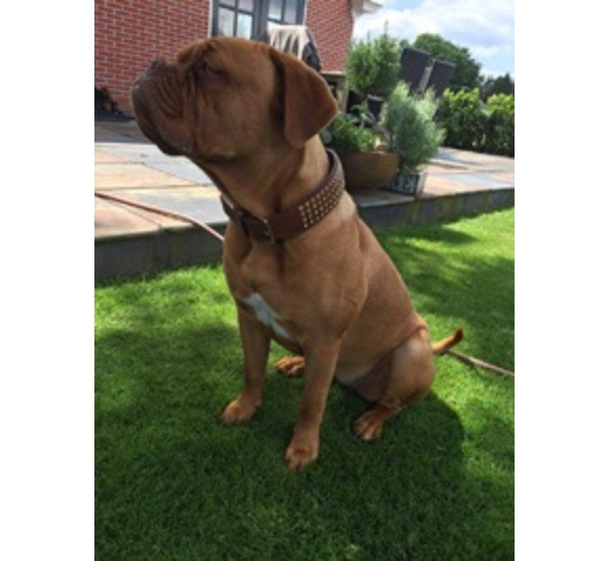 Hondenhalsband Swarovski Extreme Brown 45mm