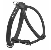 Hunter Dog Harness Elk Petit Black