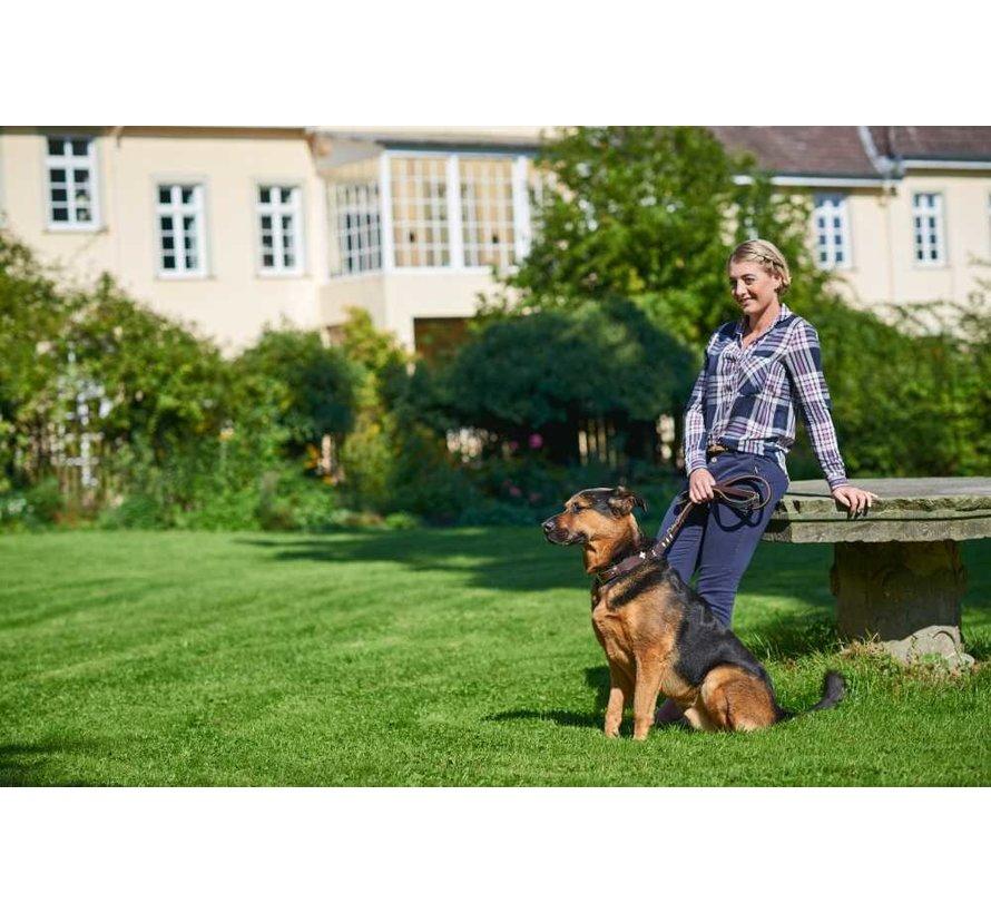 Hondenriem Swiss Bruin