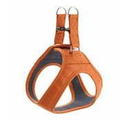 Hunter Dog Harness Hilo Orange