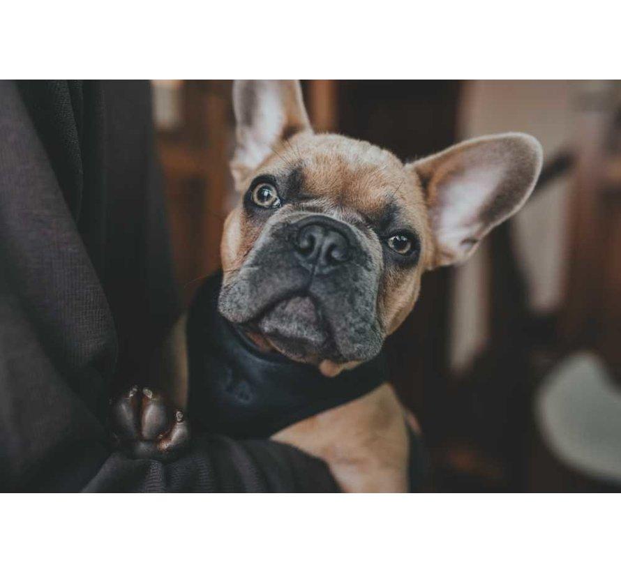 Hondentuig Hilo Zwart