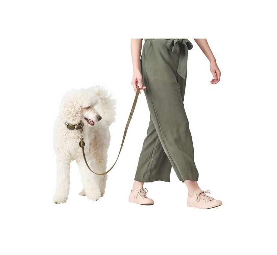 Dog Leash Green Leather