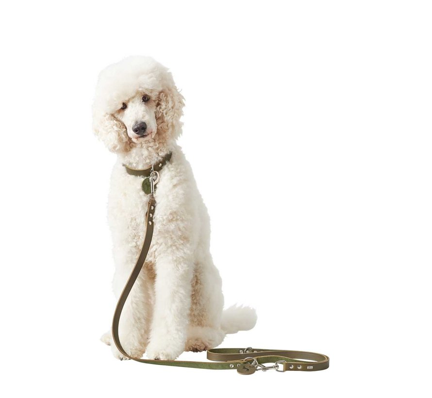 Adjustable Dog Leash Green Leather