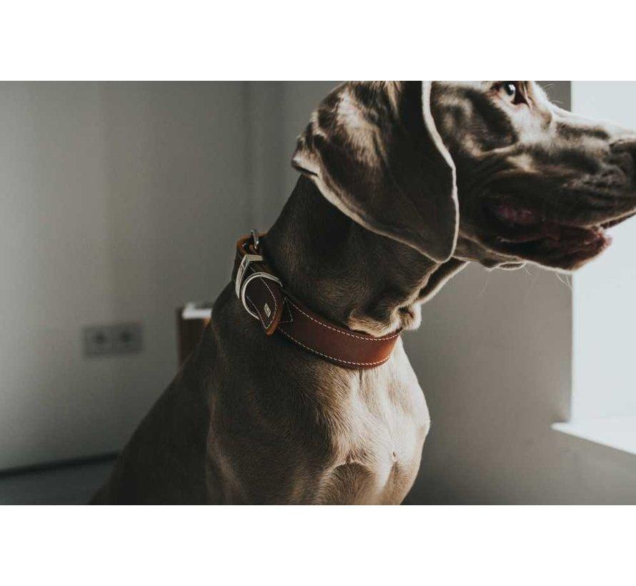 Dog Collar Aalborg Special Cognac