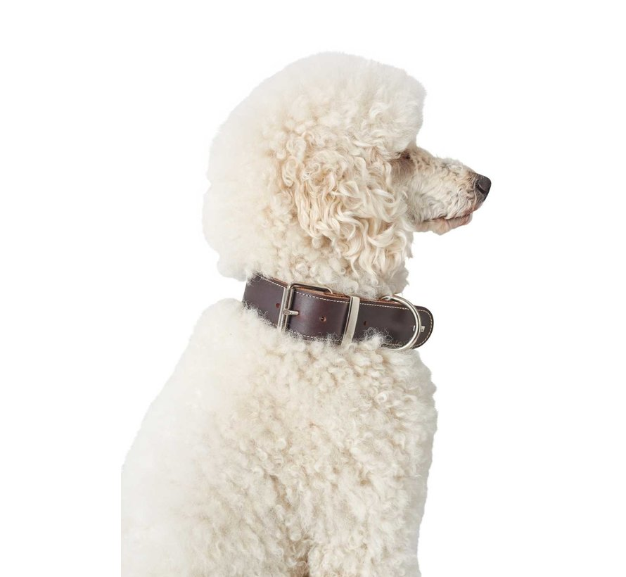 Hondenhalsband Aalborg Special Bruin