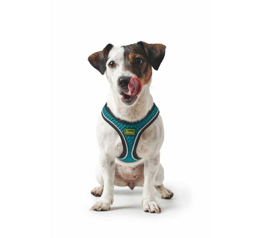 Dog Harness Hilo Comfort Turquoise