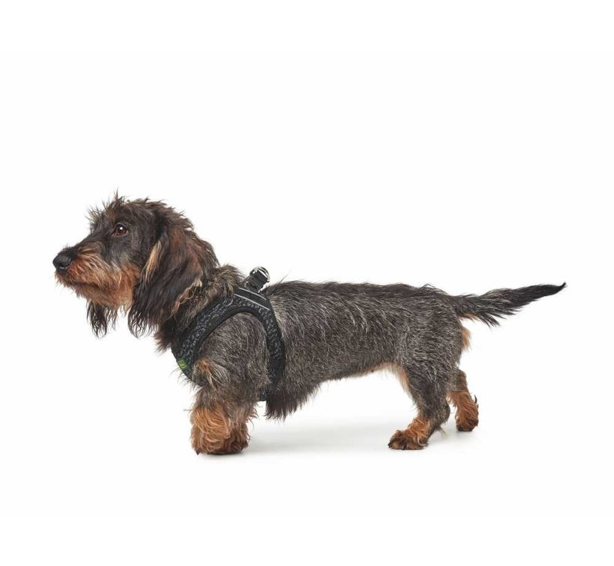 Dog Harness Hilo Soft Comfort Grey