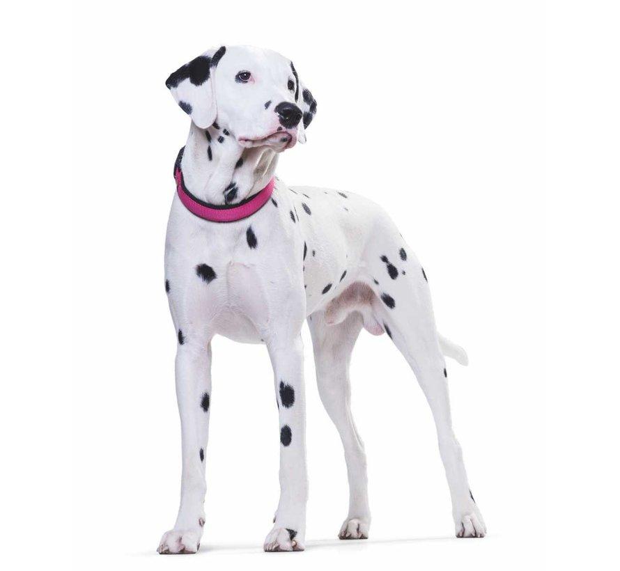 Hondenhalsband Neopreen Vario Plus Raspberry