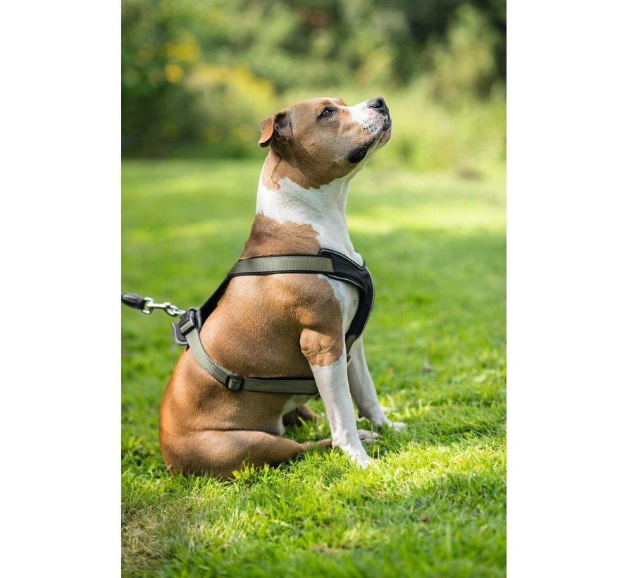 Dog Harness Neoprene Green