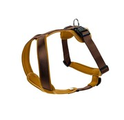 Hunter Dog Harness Neoprene Caramel