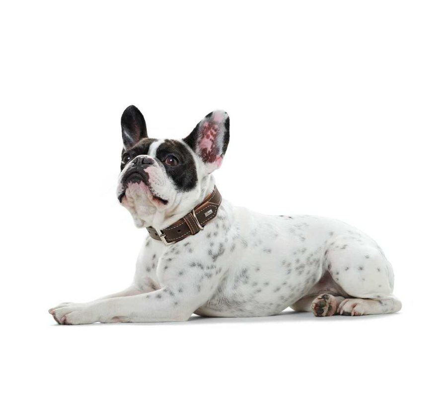 Hondenhalsband Porto Donkerbruin