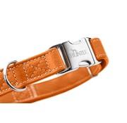 Hunter Dog Collar Cannes Alu Strong Orange