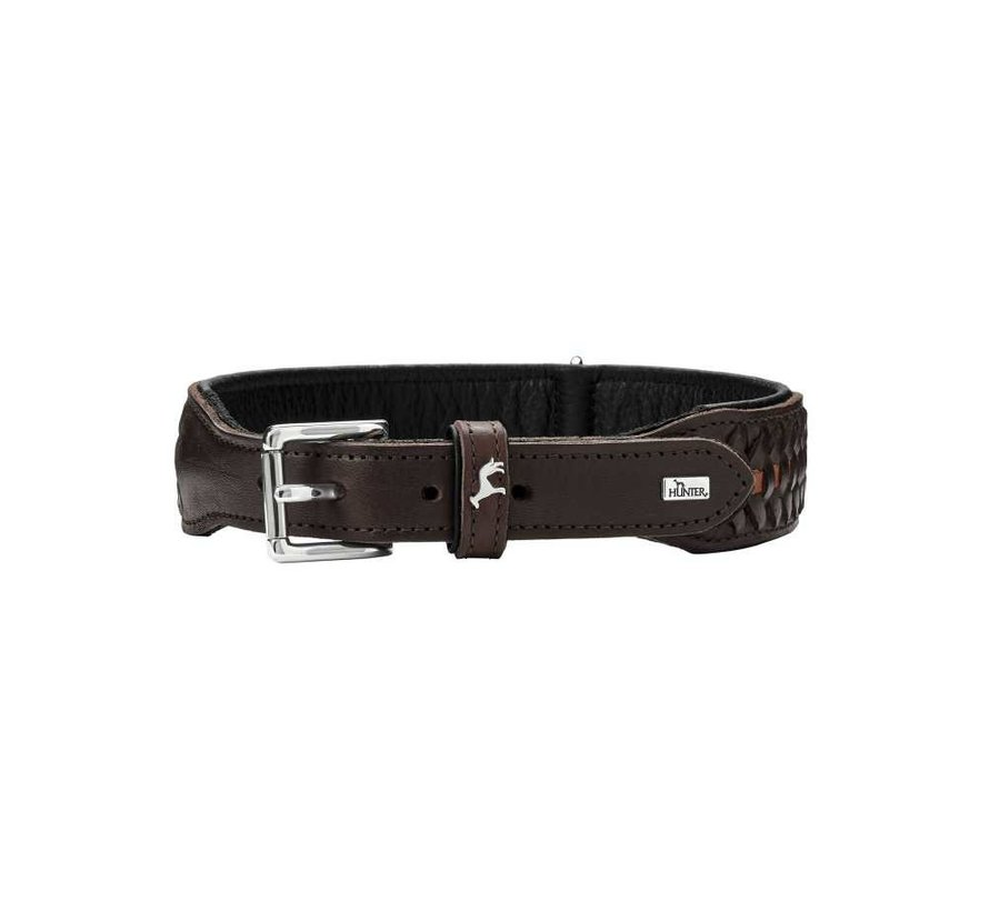 Dog Collar Solid Education Exclusive