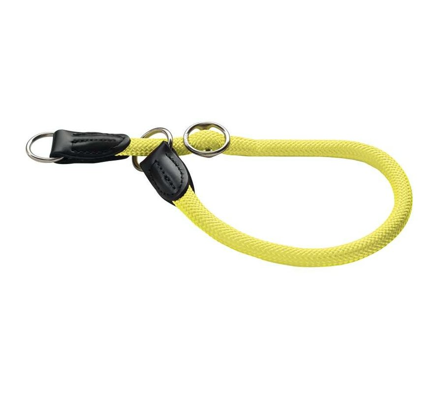 Training Halsband Hond Freestyle Neon Geel