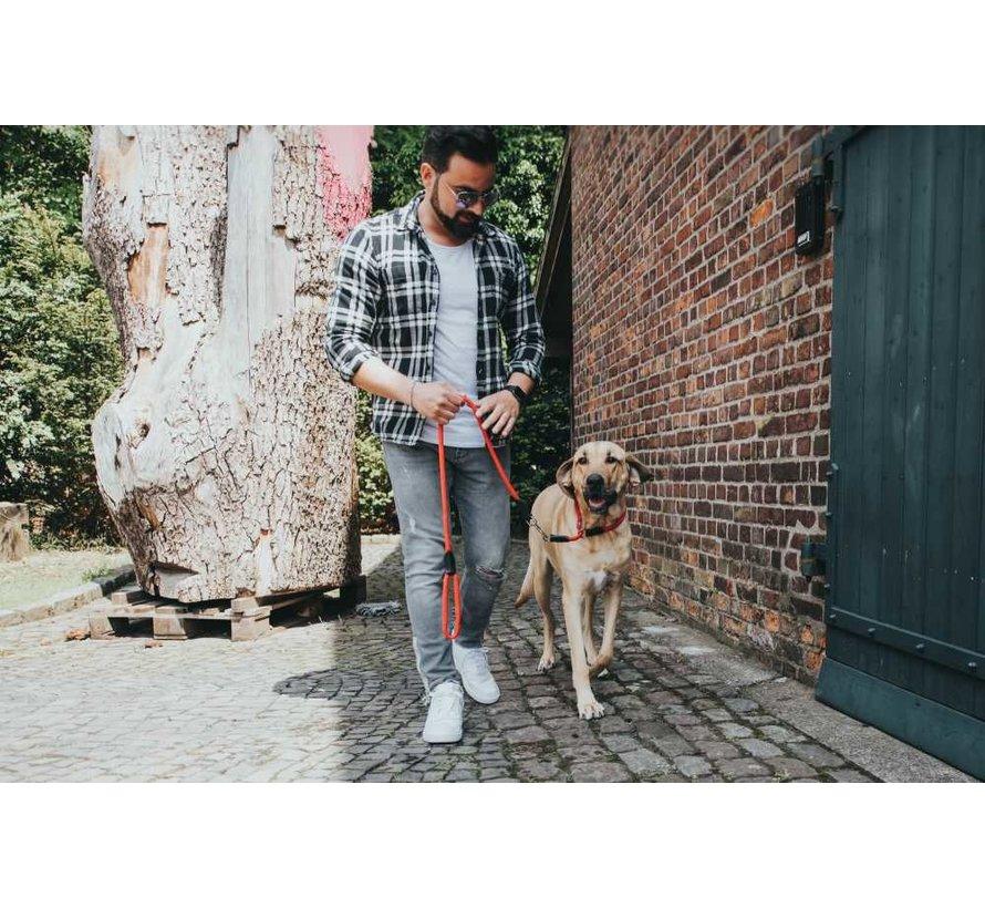 Training Halsband Hond Freestyle Rood