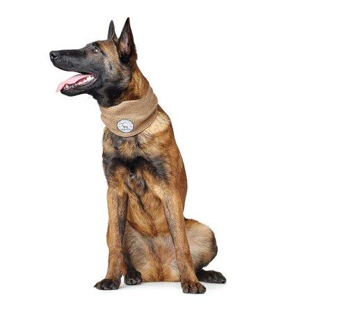 Hunter Dog Scarf Malmö Beige