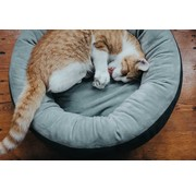 Hunter Cat Bed Sumba