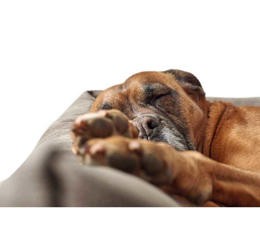 Hondenmand Kunstleer Bologna Stone