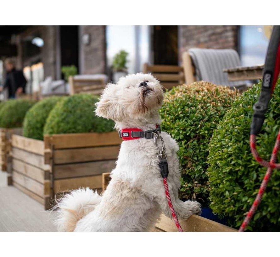 Dog Collar Urban Explorer Classic Red (V2)