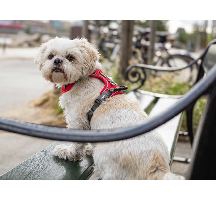 Dog Harness Comfort Walk Pro Classic Red (V2)