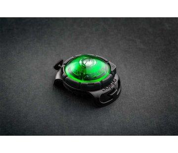 Orbiloc Dog Dual Light Green